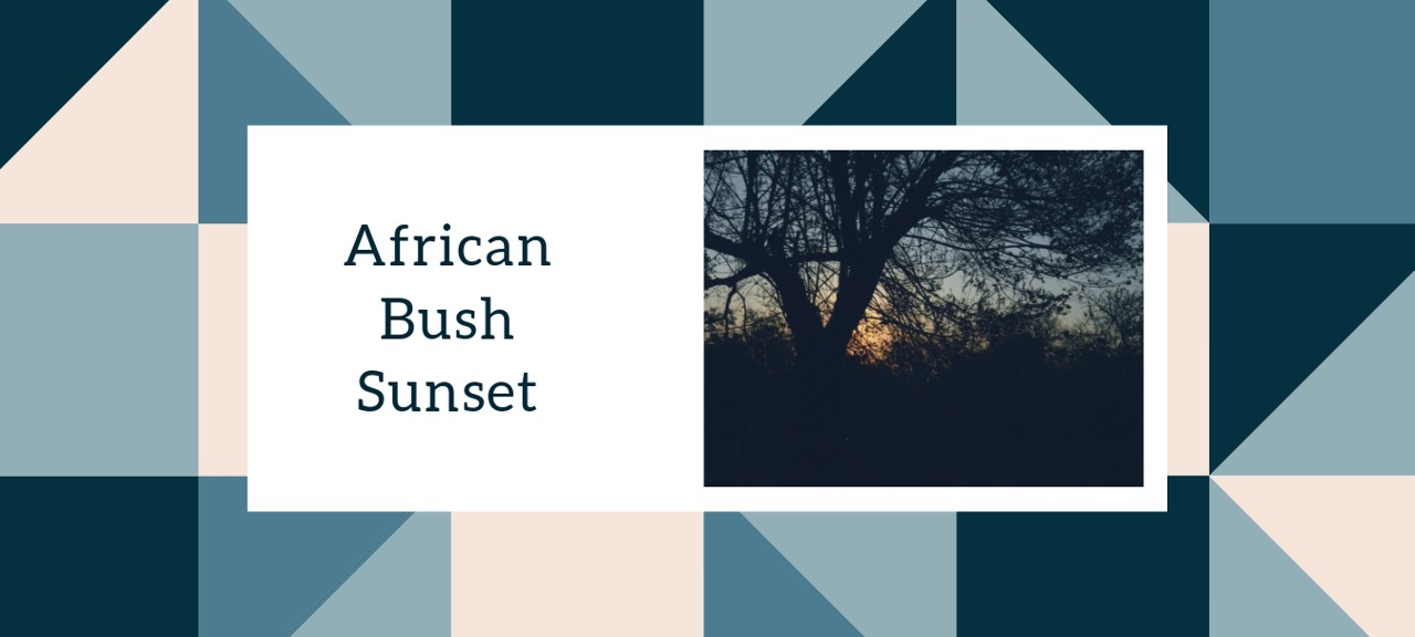 African Bush Sunset