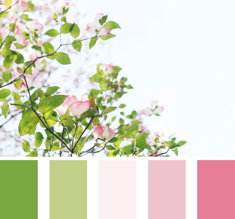 Complementary pink and green colour scheme