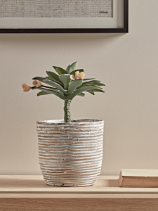 Whitewashed Rattan Planter