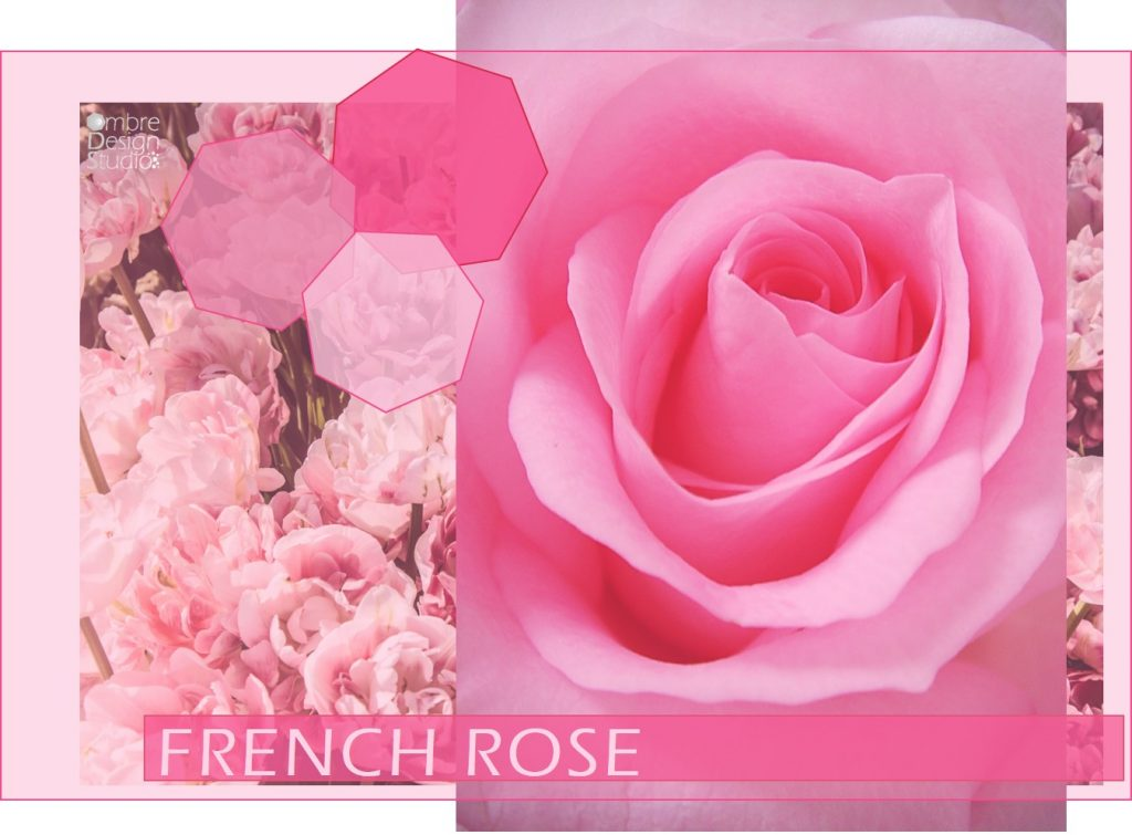 French Rose Pink