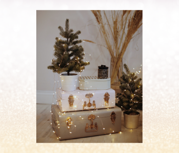 White, grey and gold decorating with small trees and suitcases